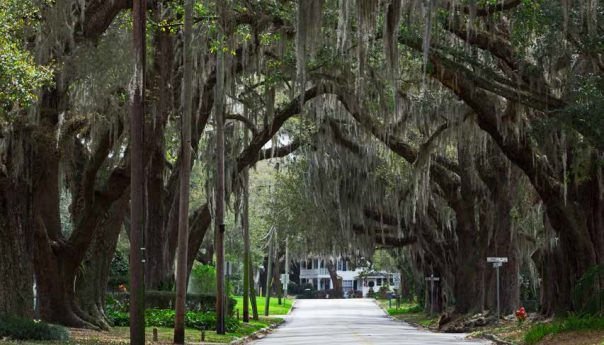 EXPLORE SANFORD: YOU WILL LOVE IT